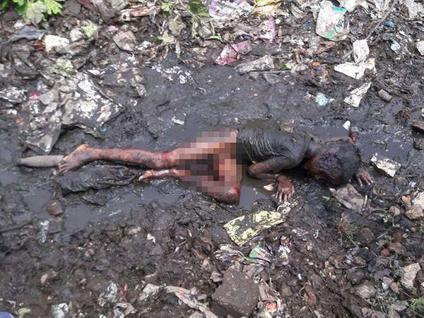 भटक्या कुत्र्यांनी हल्ला केल्याने चिमुकल्याचा मृत्यू झाला. - Divya Marathi