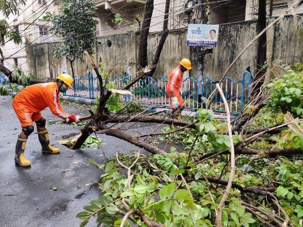 पश्चिम बंगालच्या अलीपूरमध्ये एनडीआरएफची टीम रस्त्यावर पडलेली झाडे हटवताना