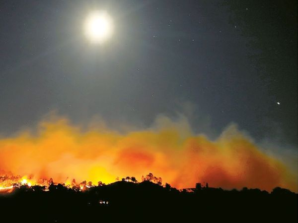 छायाचित्र कॅलिफोर्नियाच्या विंटर काउंटीचे आहे. येथे मागील पाच दिवसांपासून आग पसरत आहे. आता ती रहिवासी भागात पसरत आहे. - Divya Marathi
