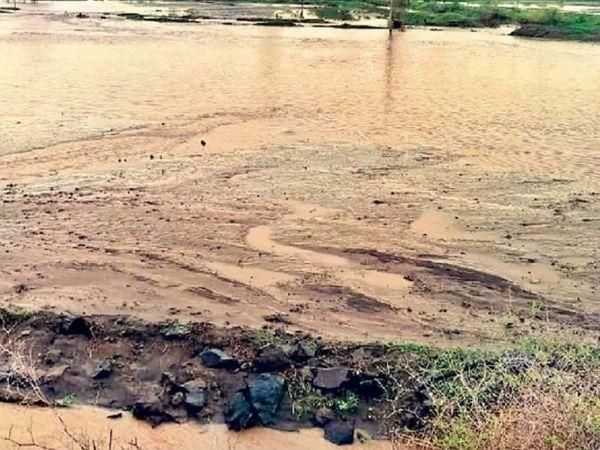 बदनापूर | गेल्या १० वर्षांत दुधना नदीला प्रथमच जून महिन्यात पूर आला. नदी दुथडी भरून वाहत असल्याने गोलापांगरी, काजळा या भागातील शेताचे असे तळे झाले. - Divya Marathi