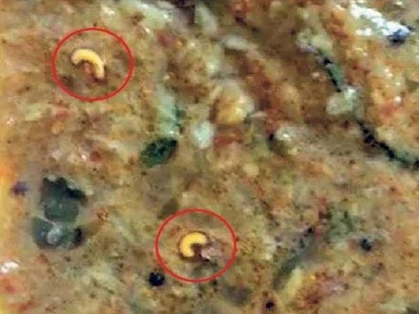 हिंगोली शहरातील अंधारवाडी क्वाॅरंटाइन सेंटरमध्ये महिनाभरापूर्वी भोजनात अळ्या निघाल्या होत्या तेव्हाचे छायाचित्र. - Divya Marathi