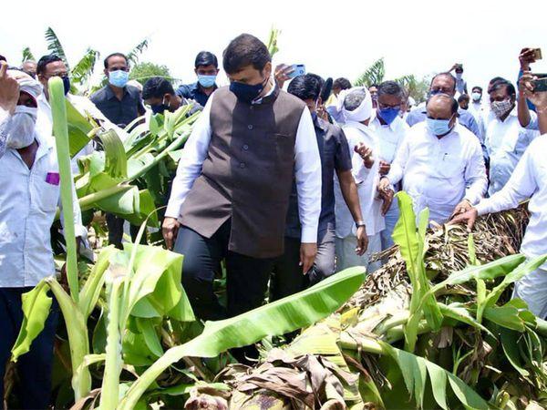 मुक्ताईनगर शिवारात नुकसानग्रस्त केळीची शेतकऱ्यांसोबत पाहणी करताना देवेंद्र फडणवीस. - Divya Marathi