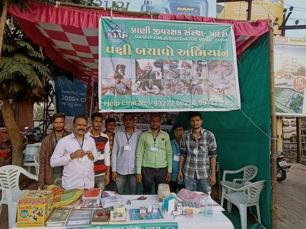 પાદરા ST ડેપો પાસે પ્રાણી જીવરક્ષક સંસ્થા દ્વારા કેમ્પનું આયોજન - Divya Bhaskar