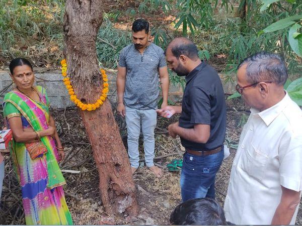 રતનમહાલના જંગલમાં સાગેનના દુર્લભ વૃક્ષની પૂજા કરી હતી - Divya Bhaskar