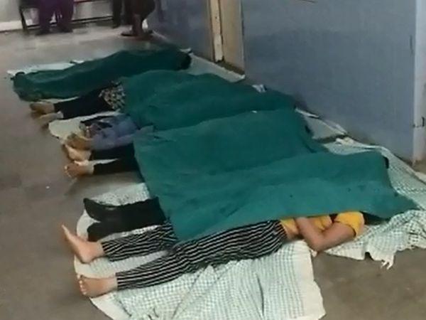 વડોદરાની સયાજી હોસ્પિટલમાં રાખવામાં આવેલા મૃતદેહો. - Divya Bhaskar