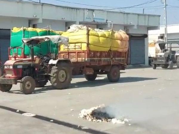 એપીએમસી પરિસરમાં કપાસ સળગાવી ઉગ્ર રોષ વ્યક્ત કર્યો. - Divya Bhaskar