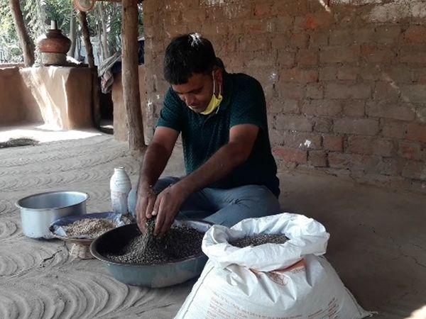 ગુજરાતમાં સૌ પ્રથમ કાળા ઘઉંની ખેતી કરીને  નવો ચીલો ચિતર્યો છે. - Divya Bhaskar