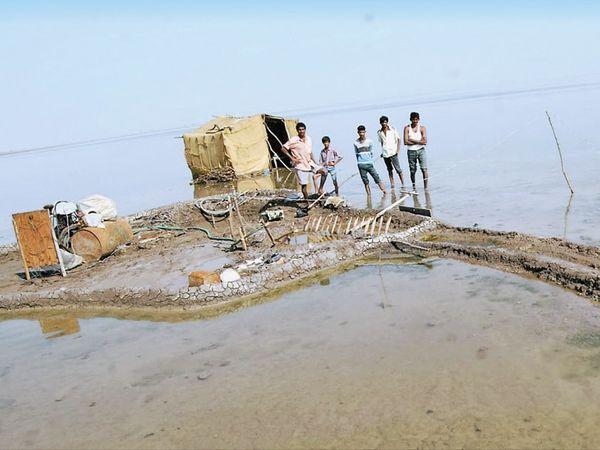 અભયારણ્ય વિભાગ મીઠું પકવતા અગરિયાઓ માટે પીવાના પાણીની પાઇપલાઇનની મંજૂરી આપતો નથી. - Divya Bhaskar