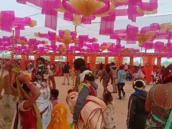 અમરેલીના ચાંદગઢ ગામે સમૂહલગ્નનું આયોજન કરવામાં આવ્યું હતું. - Divya Bhaskar
