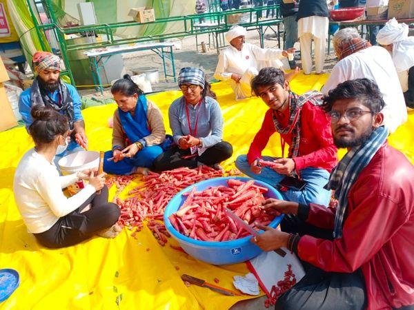 અરવલ્લી જિલ્લા વિદ્યાર્થી સંગઠને દિલ્લીમાં આંદોલન ચલાવી રહેલા ખેડૂતોના ભોજન બનાવવામાં પણ મદદ કરી હતી. - Divya Bhaskar