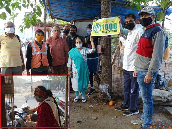 શહેરીજનોએ 5 મહીનામાં 'ફ્રી ધ ટ્રી' અભિયાન હેઠળ 1000 વૃક્ષોને પાંજરામાંથી મુક્ત કર્યા હતા જે પ્રસંગે શહેરના મેયર  જીગીશાબેન શેઠે ઉપસ્થિત રહી કામગીરીને બિરદાવી હતી. - Divya Bhaskar