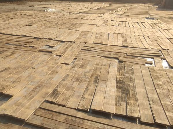 જૂના કોર્ટનું લાકડું 30 વર્ષ સુધી મજબૂત રહ્યું હતું જ્યારે નવા કોર્ટનું લાકડું એક વર્ષ પણ ટક્યું નહીં, જેથી ફરી ફ્લોરિંગ કરવું પડશે. - Divya Bhaskar