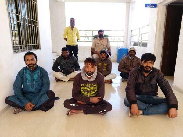 ખેડૂત સાથે છેતરપિંડી કરનાર છ શખ્સોને વિસાવદર પોલીસે ધરપકડ કરી - Divya Bhaskar