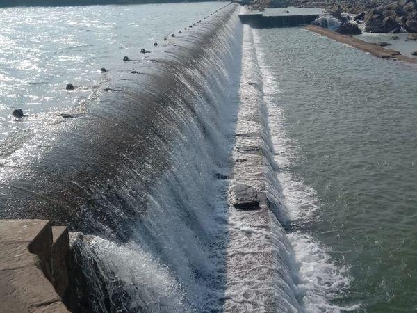 જોજવા આડબંધ ઓવરફ્લો થતાં નદીના પટમાં તરબૂચ, ટેટી તેમજ શાકભાજીનું વાવેતર કરતા ખેડૂતોમાં ચિંતા ઊભી થઇ. - Divya Bhaskar