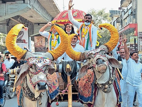 કોંગ્રેસના પાટીદાર ઉમેદવાર ફોર્મ પાછું ખેંચી લે : ધાર્મિક માલવિયા - Divya Bhaskar