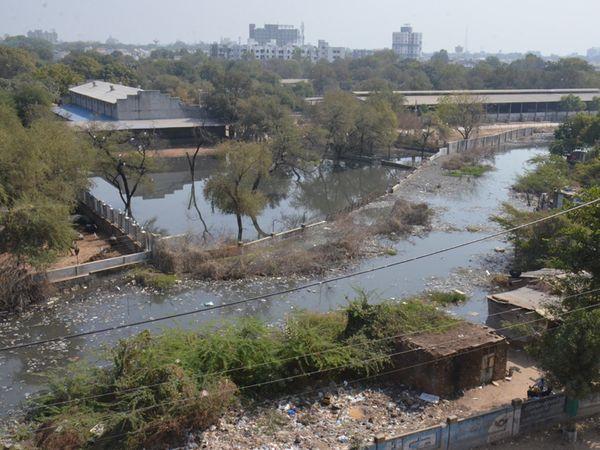 માર્ગ અને મકાન વિભાગે કામગીરીના ભાગરૂપે વ્હોળામાં પાળો કરતાં પાણી રોકાતાં દૂર્ગંધ ફેલાઈ રહી છે. - Divya Bhaskar