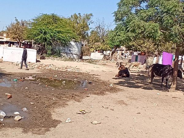 અંધેરીપટ્ટાના કોમનપ્લોટમાં ગંદુ પાણી ભરાવાની સમસ્યા 20 વર્ષથી યથાવત - Divya Bhaskar