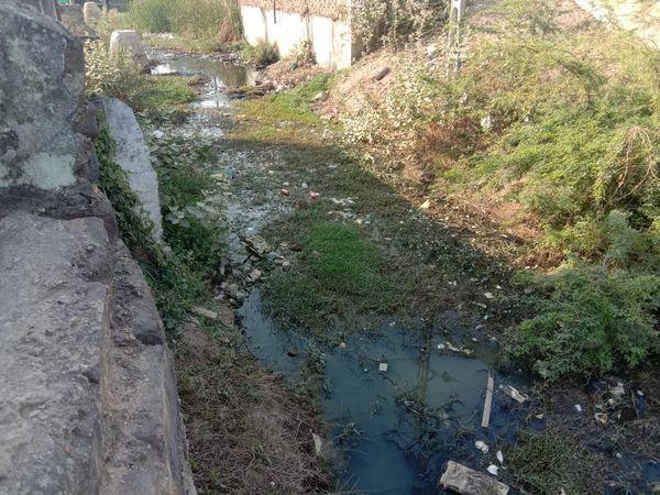 પાલનપુર વોર્ડ નંબર 1માં લડબી નદીની સાફ સફાઈ તો કરાઈ પણ ચેમ્બરો સાફ કરાતી નથી. - Divya Bhaskar