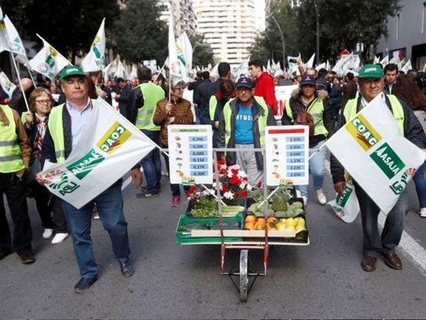 સ્પેનમાં ખેતપેદાશોની નિકાસમાં નુકસાનની ભીતિ સર્જાતાં અને EU ફાર્મ સબસિડીમાં 15%નો કાપ મૂકવાના પ્રસ્તાવ બાદ ખેડૂતો પાસે આંદોલન સિવાય કોઈ માર્ગ રહ્યો નહોતો.