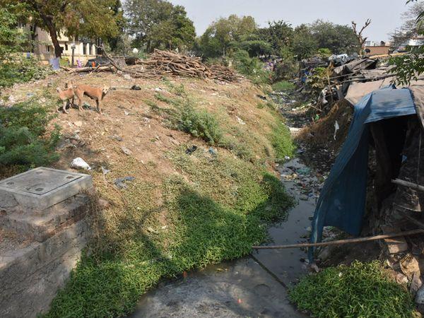 ભરૂચના અયોધ્યા નગરના વોર્ડ નં.4માં ખુલ્લીકાંસમાંથી દુષિત પાણી વહેતા સ્થાનિકોને ભારે મુશ્કેલી પડી રહી છે. - Divya Bhaskar