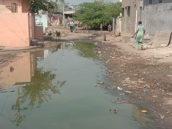 પાણીના નિકાલ અને સફાઇના અભાવે ઠેર ઠેર ગંદા પાણી ભરાયેલા છે. - Divya Bhaskar
