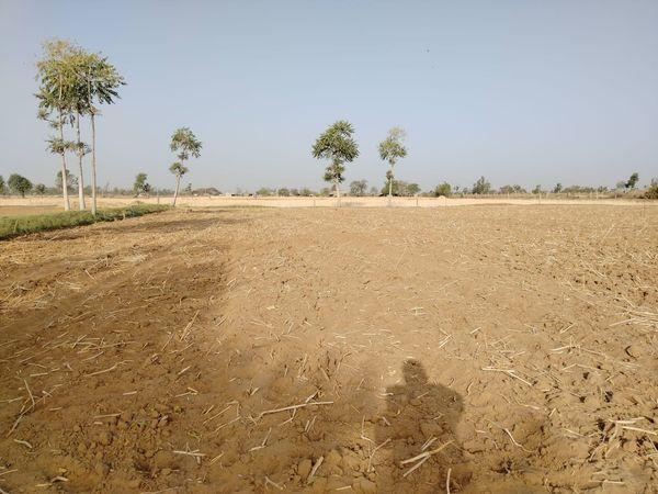 10 વીઘા જમીનમાં સંગ્રહ કરેલા પાણીથી ખેતી કરાશે