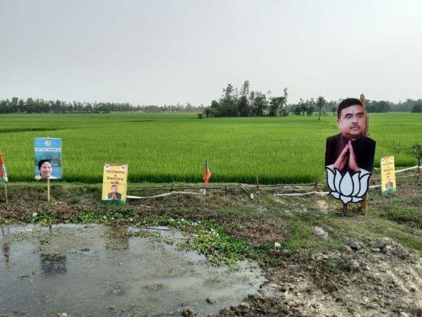 ममता बनर्जी और शुभेंदु अधिकारी के कटआउट भी यहां खेतों में दिखते हैं।