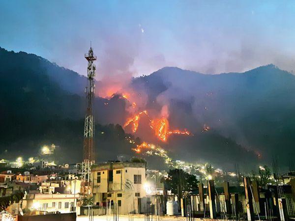 જંગલોમાં લાગેલી ભયાનક આગની તસવીર - Divya Bhaskar