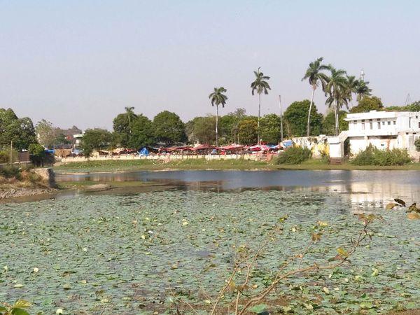 છોટાઉદેપુર નગરમાં આવેલ કુસુમસાગર તળાવમાં ગંદકીનું સામ્રાજ્ય. - Divya Bhaskar