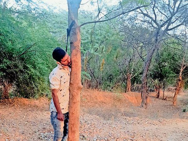 કાતોલમા લીમડાના ઝાડ ઉપર ફાસો લગાવી યુવક મોતને ભેટ્યો હતો. - Divya Bhaskar