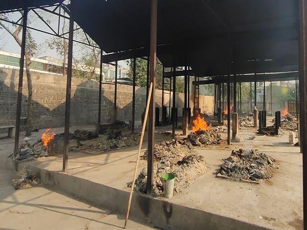 इसके साथ ही सयाजी मुक्तिधाम में 28 चीते जलाए गए