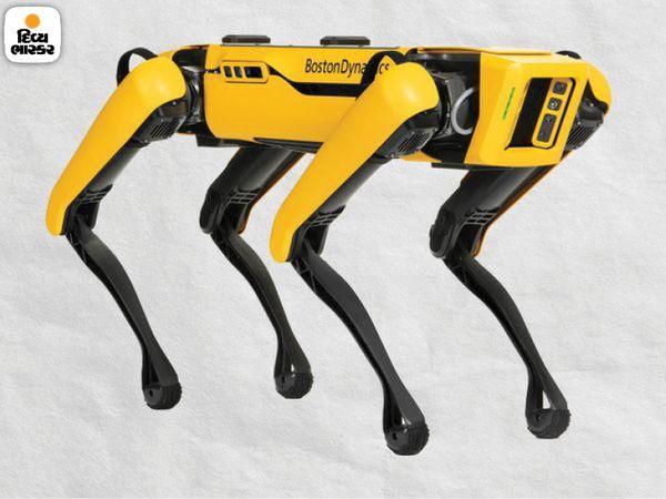 रोबोट डॉग बनाने वाली कंपनी ने इसके दो मॉडल बनाए हैं।  कंपनी का दावा है कि दुनिया में लगभग 500 ऐसे रोबोट कुत्ते काम कर रहे हैं।