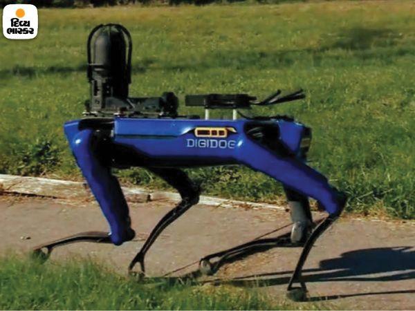 यह रोबोट कुत्ता ऊबड़-खाबड़ सड़कों पर कृत्रिम बुद्धिमत्ता की तरह चलता है।  यह रिमोट टॉकिंग डिवाइस, कैमरा और स्कैनर से लैस है।