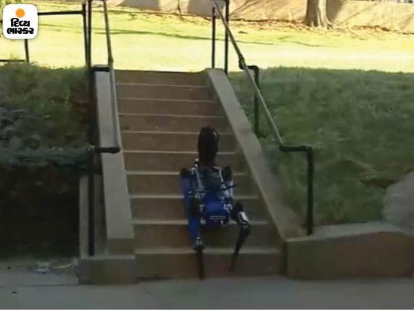 यह रोबोट डॉग कृत्रिम बुद्धिमत्ता के कारण सीढ़ियों पर आसानी से चढ़ सकता है।  वह जल्दी से गणना कर सकता है और अपने लिए सबसे अच्छा तरीका चुन सकता है।