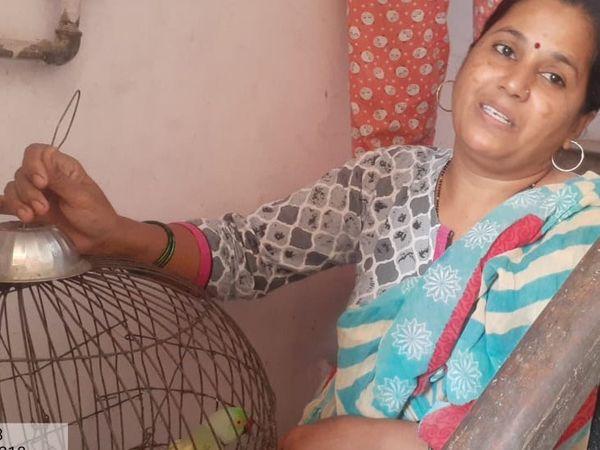 ગુજરાત પ્રાણી ક્રુરતા નિવારણ સંસ્થા અને વન વિભાગે ઘરમાં ગોંધી રાખવામાં આવેલા વન્ય જીવોને મુક્ત કરાવવાનું અભિયાન છેડ્યું