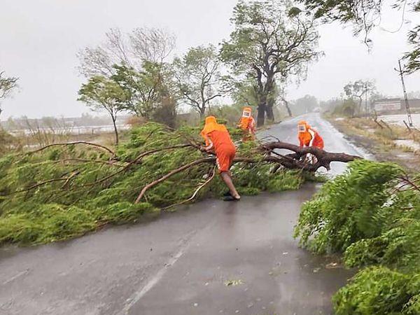 મુંબઈમાં અનેક જગ્યાએ ઝાડ પડી ગયા છે અને રસ્તાઓ બ્લોક થઈ ગયા છે
