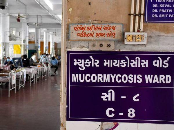 456 દર્દીઓની સર્જરી સફળતાપૂર્વક હાથ ધરવામાં આવી - Divya Bhaskar