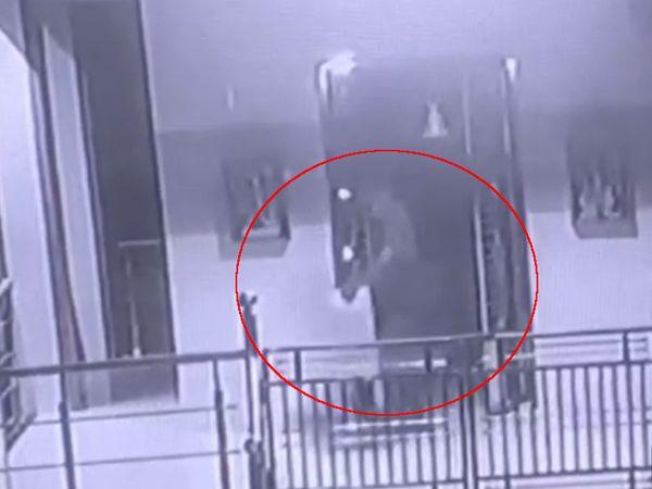 રાત્રિ 3 વાગ્યે મંદિરમાંથી દાનપેટી લઈને નીકળેલો તસ્કરો CCTVમાં કેદ થયો હતો. - Divya Bhaskar