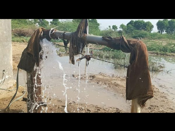 પાટડીના પાનવા ગામે મોટર ચાલુ કરી પાણી અપાતા ગ્રામજનોમાં રાહત ફેલાઇ હતી.તસવીર- મનીષ પારીક - Divya Bhaskar