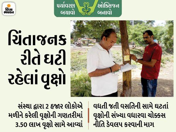 સંસ્થા દ્વારા અગાઉ સ્વયંસેવકો સાથે મળીને વૃક્ષોની ગણતરી કરીને નંબર આપવામાં આવ્યો હતો. - Divya Bhaskar