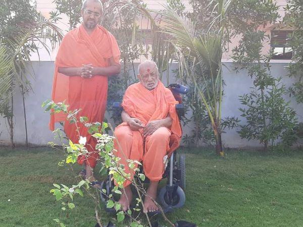 વૃક્ષોનો ઉછેર કરો,વૃક્ષોનું ઉચ્છેદન નહીં. - Divya Bhaskar