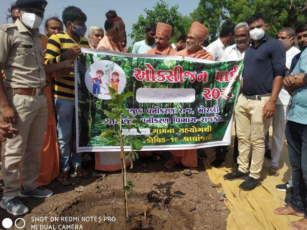 પાર્કમાં ઉછેરાશે ઔષધિય વૃક્ષો અને તેનું જતન કરાશે - Divya Bhaskar