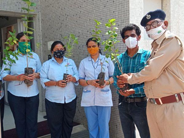 વનવિભાગ દ્વારા 500 હોસ્પિટલોના કોરોના વોરિયર્સને પણ 5000 છોડવાઓ ભેટસ્વરૂપે અાપવામાં આવ્યા હતા. - Divya Bhaskar
