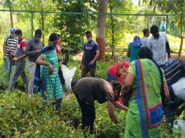 વન વિભાગના અધિકારીઓ મંત્રીઓના કાર્યક્રમમાં વ્યસ્ત હોવાથી અંધાધૂંધીની સ્થિતિ સર્જાઈ.