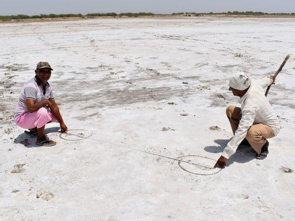 પાટડી તાલકાના રણમાં માણસના અસામાન્ય પગલાંઓ જોવા મળતા કૌતુક ફેલાયું, માનવ પગલાં વચ્ચે જોવા મળ્યું 6 ફૂટનું અંતર - Divya Bhaskar