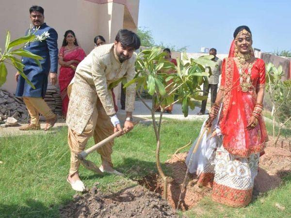 વઢવાણના શિક્ષકે તેમના દીકરીના લગ્ન પ્રસંગે વૃક્ષારોપણ કરાયું હતું. - Divya Bhaskar