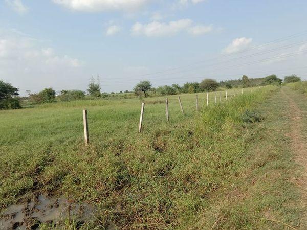 RTO બનાવવા મોતાગામે 2019માંં ફાળવાયેલી 3.46 હેકટરની જમીનમાં હજી એક ઇંટ મુકવામાં આવી નથી - Divya Bhaskar