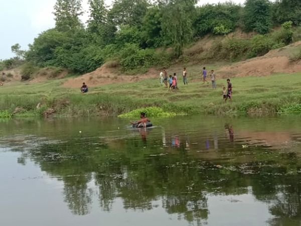 માછલી અને ઝીંગાના મોતની જાણ થતાં જ લોકો તેને એકઠા કરવા પહોંચી ગયા - Divya Bhaskar