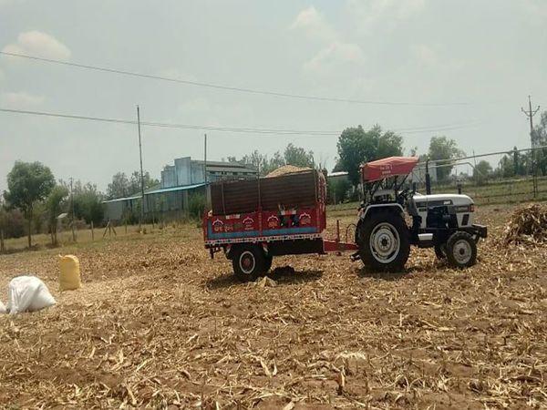 મોડાસર પાસે ખેતરમાં ટ્રેક્ટરની ટ્રોલીમાં ઘાસચારો ભરતી વેળા હાઈટેન્સન લાઇનનાં વીજવાયર સાથે અડી જતાં કરંટ લાગતા કિશોરનું મોત થયું હતું. - Divya Bhaskar