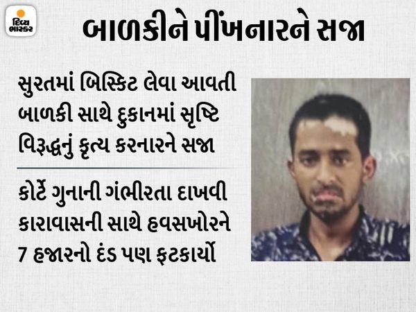 આરોપી સામે કેસ ચાલી જતા કોર્ટે કડક સજા સંભળાવી હતી. - Divya Bhaskar